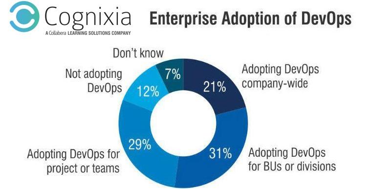 enterprise adoption devops