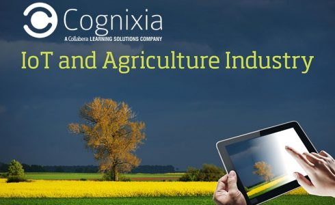 Internet of Things (IoT) and Agriculture Industry