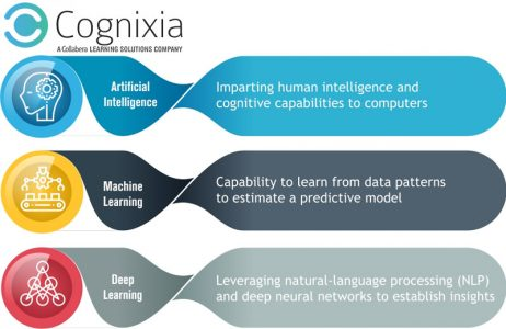 Know the Ins and Outs of AI and Machine Learning