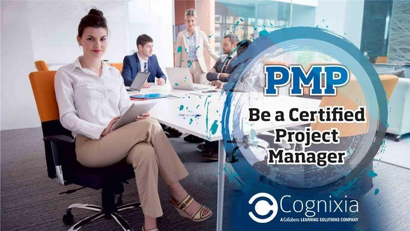 PMP Certification: Taking Enterprise Professionals to the Wonderland